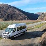 Stopped at Mt Rosa vineyard