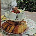 cream  Tea for 4