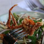 Soft Shell Crab w/ Green Mango