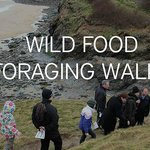Join us for our Foraging Walks