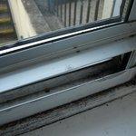 Mould on window frames