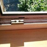 sauberes Fenster ;-)