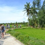 The ride through the rice paddies