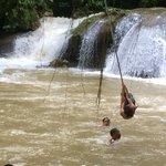 swinging into YS falls