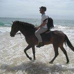 2h horse ride