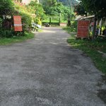 Road leading to the restaurant