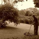 des jardins sans cesse entretenus