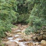 Sungai Mutiara yang sangat jernih.