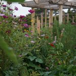Delightful flower and vegetable garden on the property