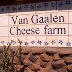 Van Gaalen