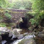 Brücke auf dem kleinen Rundweg (35 min). Schöner Platz zum Pausieren und mit den Kindern am Wass