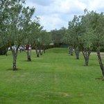 All ways garden and leisure Roma