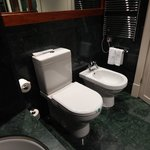 Marble bath/shower with toilet and bidet.