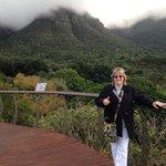 Kirstenbosch botanic gardens