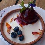 Yogurt pannacotta and blueberry sorbet.
