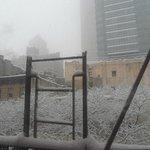Vista desde la habitación mientras nevaba