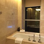 Suite 2001, Shoer & Tube with Shower