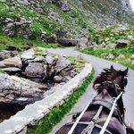 Pony & Trap ride on Gap of Dunlow Trip