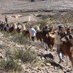 Caravana volviendo de Maimará