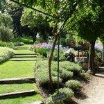 Parc floral d'Apremont - Juillet 2014