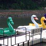 Krape Park Boat Rentals