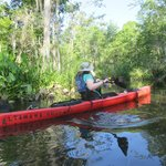 Paddling around a curve on the Cathead Creek Loop.