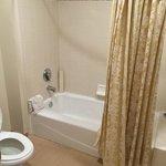 toilette and tub area