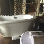 soaker tub with bath salts in beautiful room overlooking wildlife