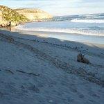 Seal Beach, Kangaroo Island