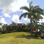Main House and yard