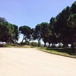 Jardines en Verano