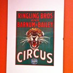 Great display of circus posters