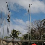 You must try flying trapeze!