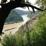Das Rheintal aufgenommen vom Rheinsteig zwischen Kaub und Loreley. Blick Richtung Loreley.
