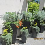 Planters artfully arranged