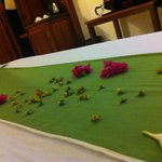 flower on bed