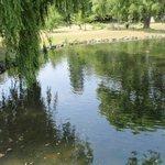 Nakajima park in Sapporo summer