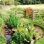 Garden leading out to meadow - part of the grounds