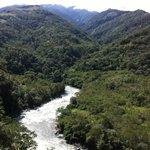 Yavero River, Amazon rainforest.