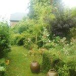 une partie du jardin.