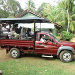 safari to udawalawa national park