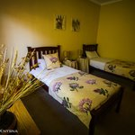 Our Twin-ensuite room, The Protea Room!