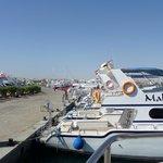 going to Mahmaya