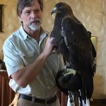 Golden Eagle meet and greet in the morning.