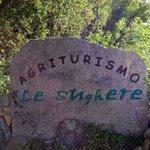 Foto de Agriturismo Le Sughere