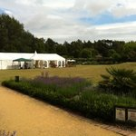 Walled garden with wedding marquee