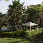 Pool area / grass area