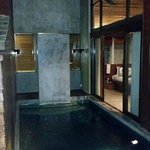 Private pool in room