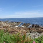 along the Marginal Way