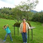 Jardín Bonsai